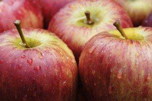 apples google(1)
