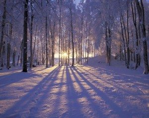 winter-sunrise-in-alaska