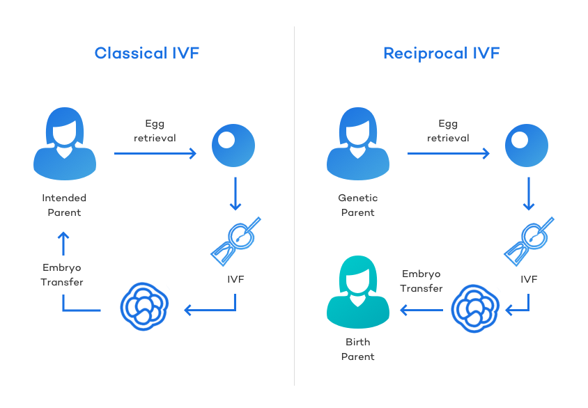 Classical vs Reciprocal IVF: How it Works
