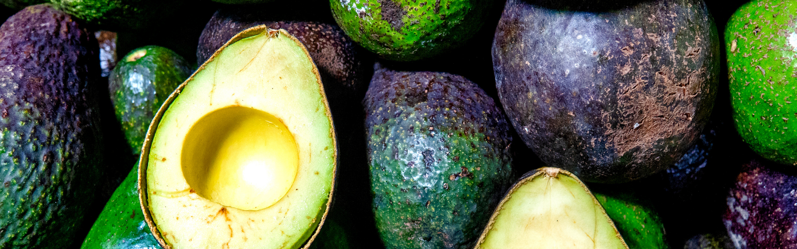 Avocados - Fruits to Increase Sperm Count and Motility