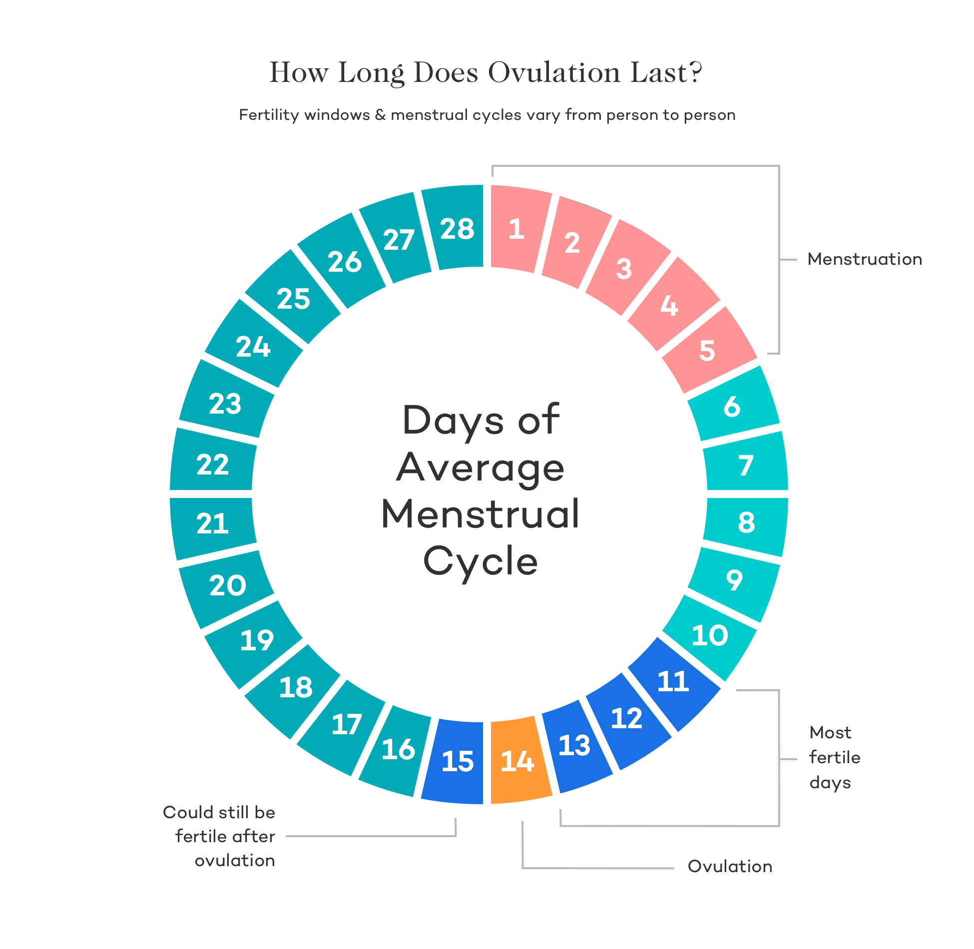 Fertile Window - Ovulation Calendar