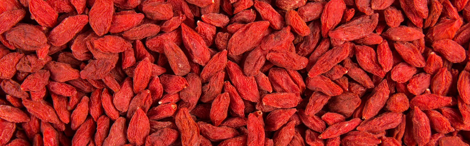 Goji berries - Fruits to Increase Sperm Count and Motility