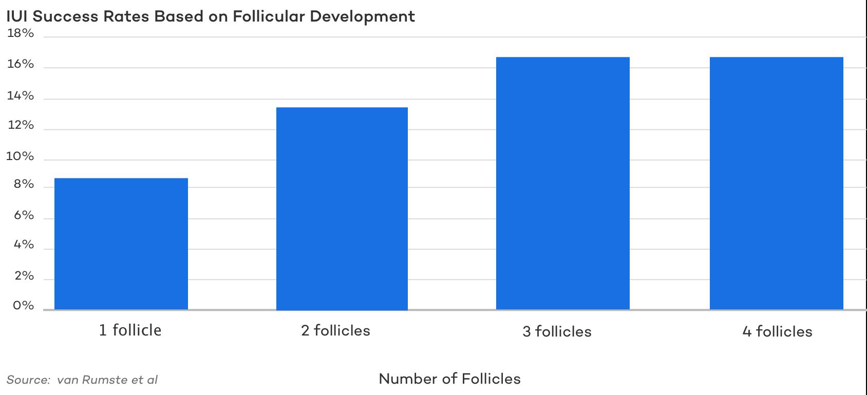 IUI Success Rates Based on Follicular Development