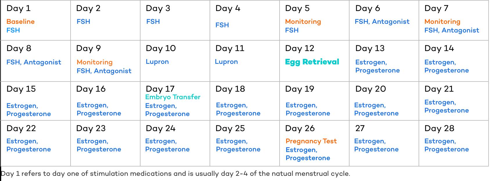 IVF Process Calendar