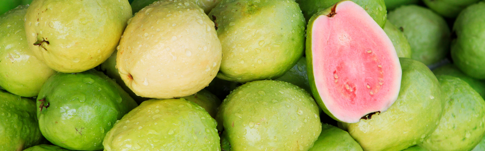 guava for sperm count and motility